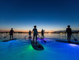 Stand Up Paddling Glow Night Toure